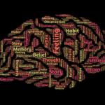 効率の良い時間の使い方と脳の関係について「脳のパフォーマンスを最大まで引き出す 神・時間術」を読んで